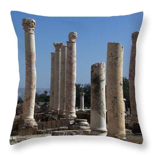 Israel Throw Pillow featuring the photograph Still Standing by Kathy McClure