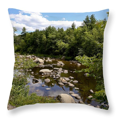 River Adirondack Throw Pillow featuring the photograph Still Water by Eric Swan