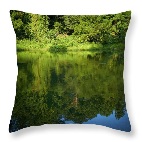Tranquility Throw Pillow featuring the photograph Still Water On The Potomac River by Cameron Davidson