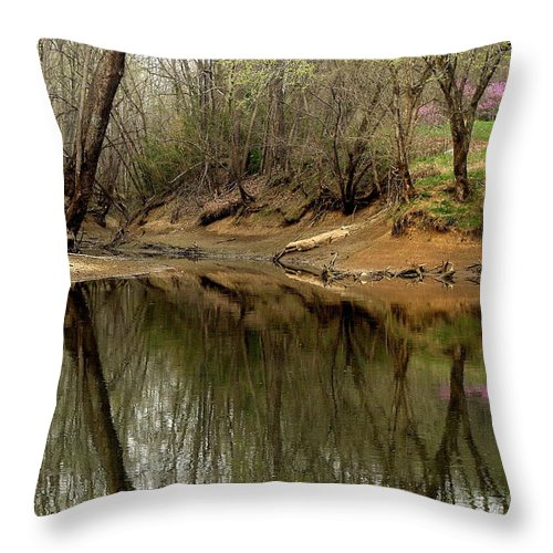 Water Throw Pillow featuring the photograph Still Waters by Douglas Stucky