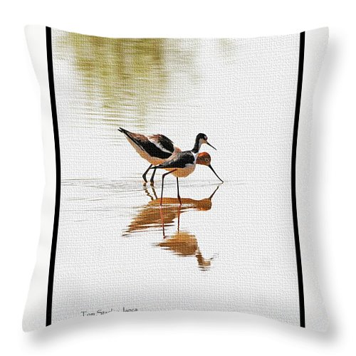 Stilt And Avocet Eat Together Throw Pillow featuring the photograph Stilt And Avocet Eat Together by Tom Janca