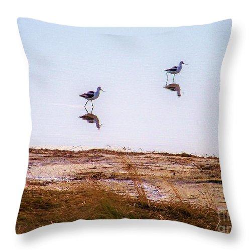 Birds Throw Pillow featuring the photograph Stilt Birds by Chuck Hicks