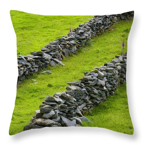 County Donegal Throw Pillow featuring the photograph Stone Fences In Ireland by John Shaw