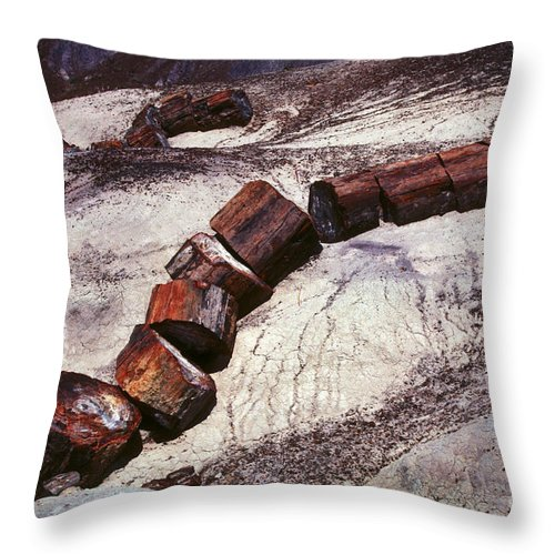 Petrified Forest Throw Pillow featuring the photograph Stone Trees - 336 by Paul W Faust - Impressions of Light