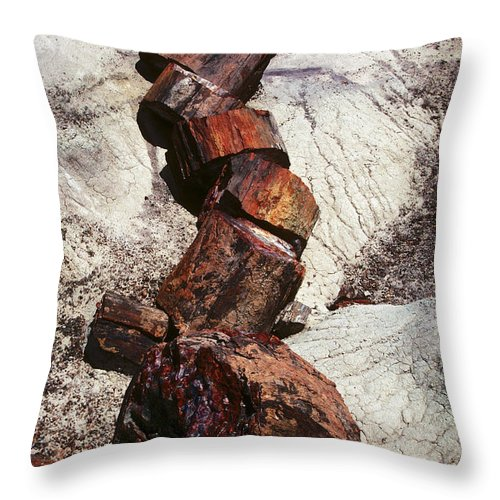 Petrified Forest Throw Pillow featuring the photograph Stone Trees - 337 by Paul W Faust - Impressions of Light