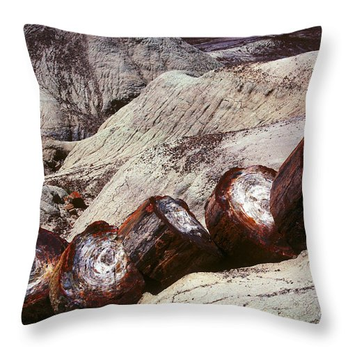 Petrified Forest Throw Pillow featuring the photograph Stone Trees - 360 by Paul W Faust - Impressions of Light