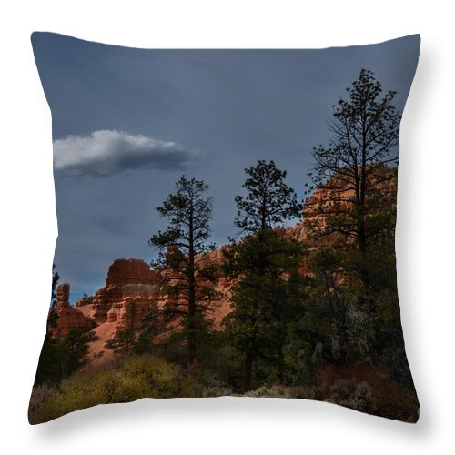 Brown Throw Pillow featuring the photograph Storms A Comin by Rich Priest