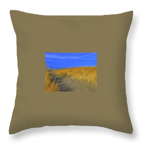 Long Beach Wa Throw Pillow featuring the photograph Stormy Walk On The Beach Iv Long Beach Wa by Jacqueline Russell