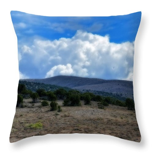 Stormy Throw Pillow featuring the photograph Stormy Wyoming Fall by Donna Greene