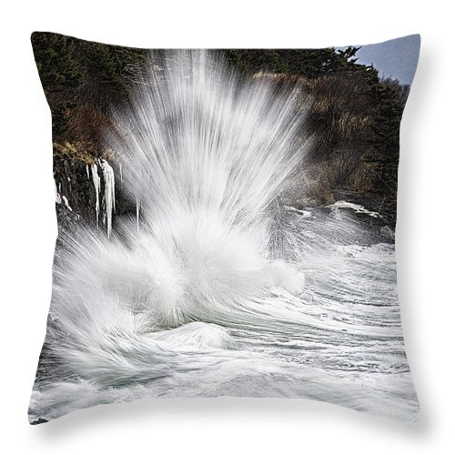 Straight Up Awesome Throw Pillow featuring the photograph Straight Up Awesome by Marty Saccone