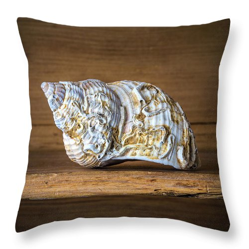 Sell Throw Pillow featuring the photograph Strange Shapes by David Hare