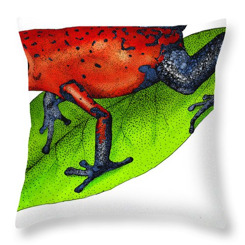 Art Throw Pillow featuring the photograph Strawberry Poison-dart Frog by Roger Hall