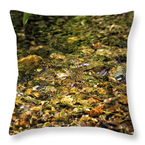 Stream Throw Pillow featuring the photograph Stream Water by Belinda Greb