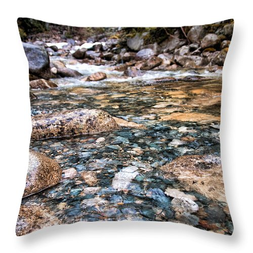 Beautiful Throw Pillow featuring the photograph Streaming by James Wheeler
