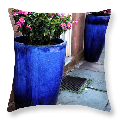 Street Colors In Charleston Throw Pillow featuring the photograph Street Colors In Charleston by John Rizzuto
