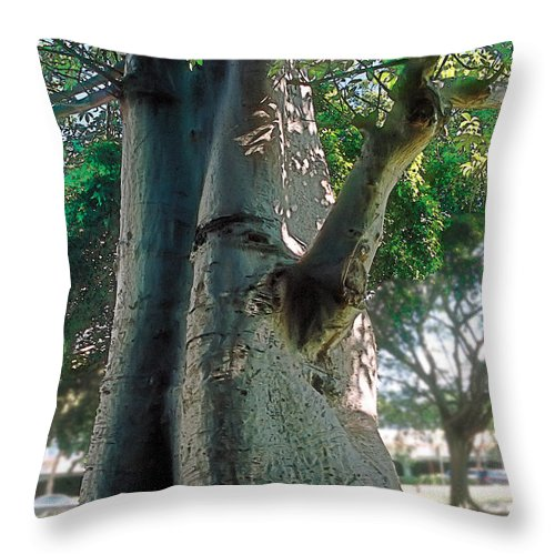 Tranquil Throw Pillow featuring the photograph Strength by Terry Reynoldson