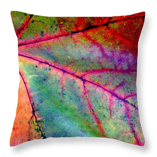 Leaf Throw Pillow featuring the photograph Study Of A Leaf by Rhonda Barrett
