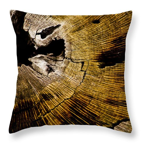 Tree Rings Throw Pillow featuring the photograph Stump Art by Patrick Moore