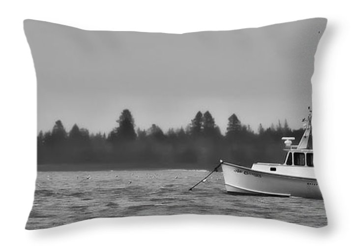 Bay Throw Pillow featuring the photograph Subtle Mooring by Richard Bean