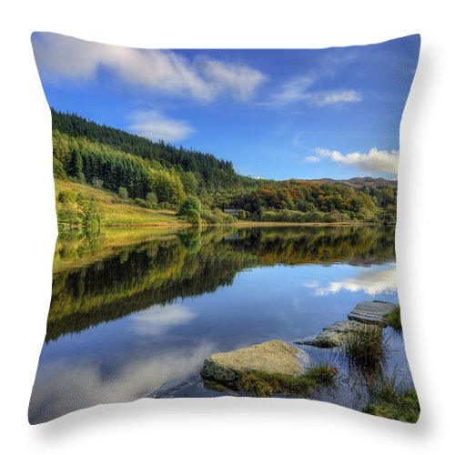 Lake Throw Pillow featuring the photograph Summer At The Lake by Ian Mitchell
