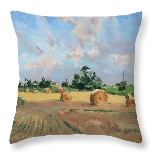 Summer Throw Pillow featuring the painting Summer Fields In Georgetown On by Ylli Haruni