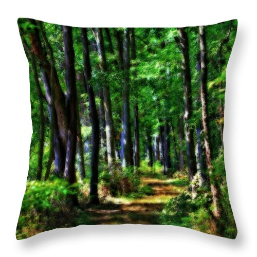 Summer Forest In Ohio Throw Pillow featuring the photograph Summer Forest In Ohio by Dan Sproul