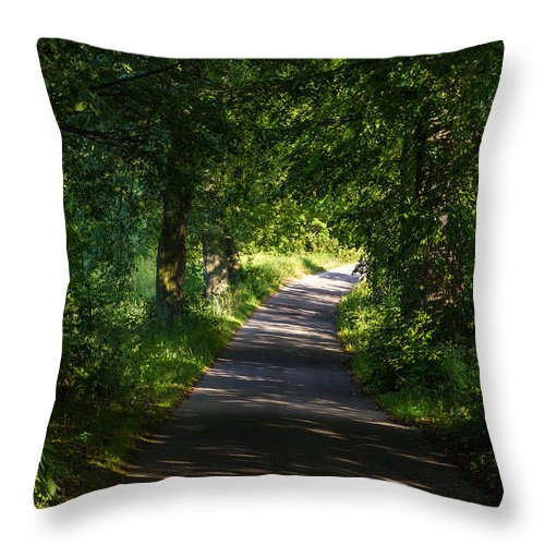 Road Throw Pillow featuring the photograph Summer Forest Road by Pati Photography