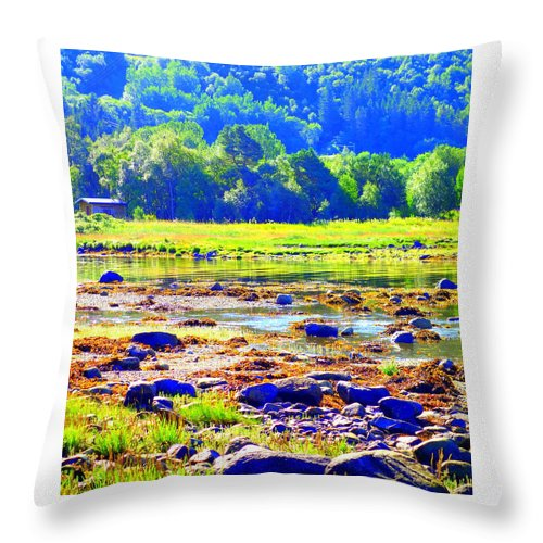 Landscape Throw Pillow featuring the photograph I Try To Keep The Summer Always In My Mind by Hilde Widerberg