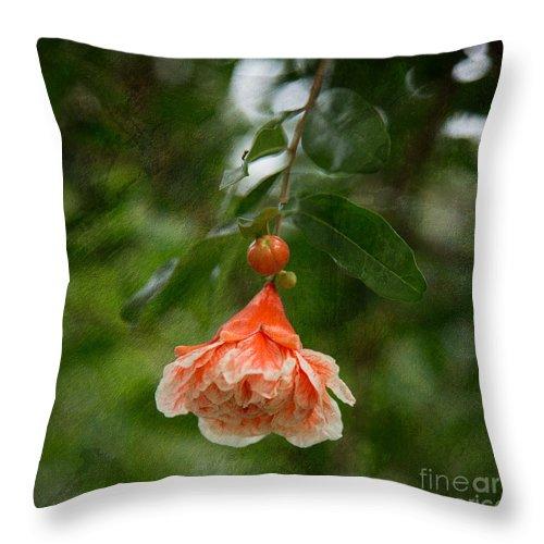 Orange Flower Throw Pillow featuring the photograph Summer In Paris by Anita Miller