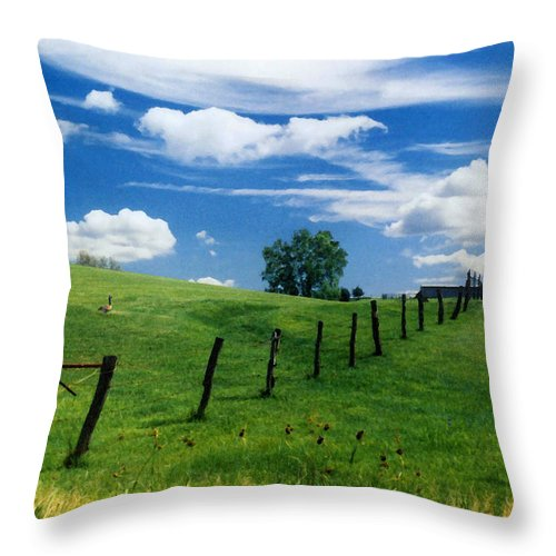 Summer Landscape Throw Pillow featuring the photograph Summer Landscape by Steve Karol
