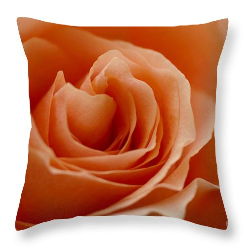 Peach Throw Pillow featuring the photograph Summer Peach by Carol Lynch