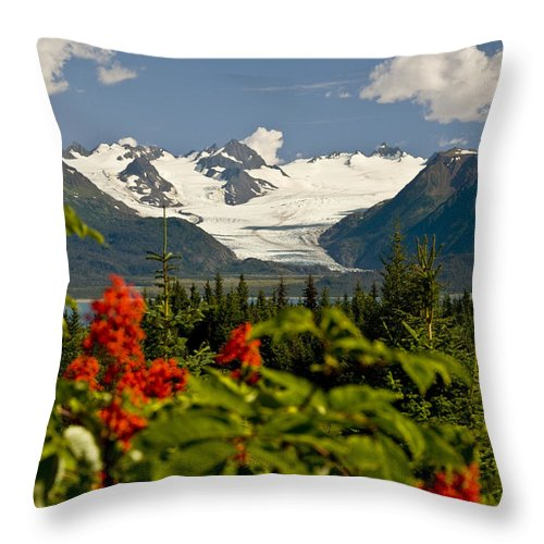 Daytime Throw Pillow featuring the photograph Summer Scenic Of Grewingk Glacier And by Bill Scott