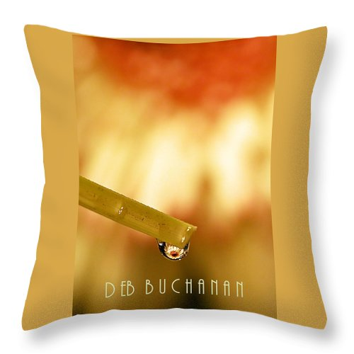 Reflection Throw Pillow featuring the photograph Summer Soltice by Deb Buchanan