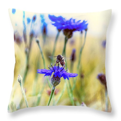 Summer Throw Pillow featuring the photograph Summerdream by Thomas Christoph