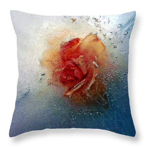 Photography Throw Pillow featuring the photograph Summers Delight by Robert Zuchowski