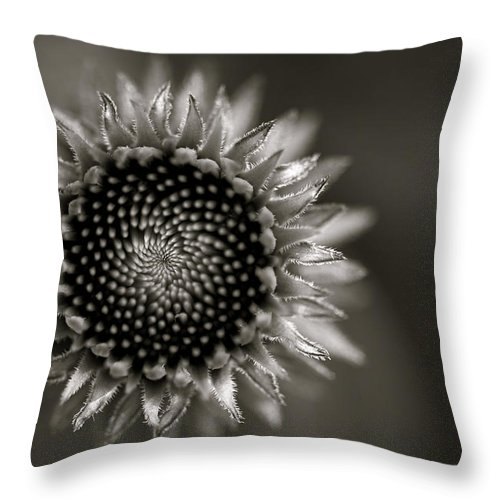 Flower Throw Pillow featuring the photograph Summer's Promise by Kristi Swift