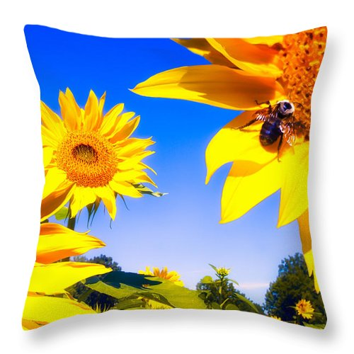 Sunflower Throw Pillow featuring the photograph Summertime Sunflowers by Bob Orsillo