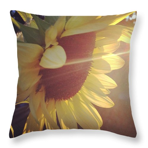Throw Pillow featuring the photograph Sun Catcher by Noel Carey