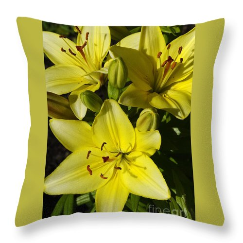 Flowers Throw Pillow featuring the photograph Sun Lit Lilies by Deborah Bowie