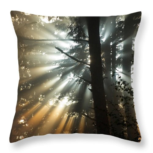 Sunbeam Throw Pillow featuring the photograph Sunbeams Through Trees by John Shaw