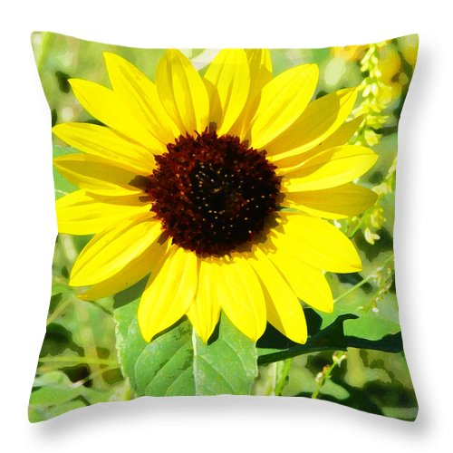 Sunflower Throw Pillow featuring the photograph Sunflower by Cathy Anderson