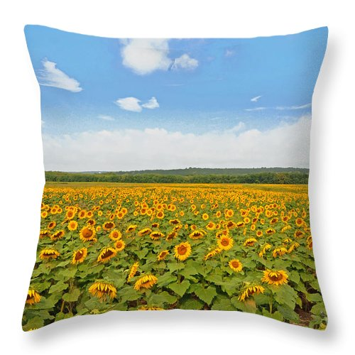 Sunflowers Throw Pillow featuring the photograph Sunflower Field New Jersey by Regina Geoghan