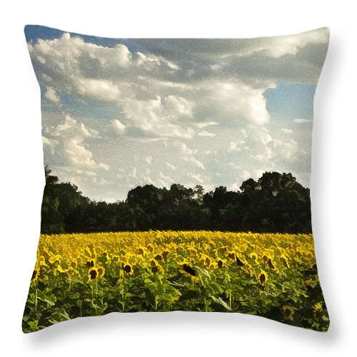 Nature Throw Pillow featuring the photograph Sunflower Field by Sharon M Connolly