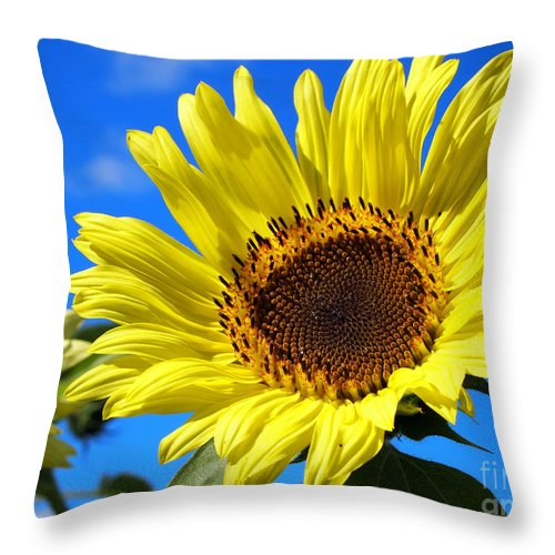 Sunflowers Photographs Throw Pillow featuring the photograph Sunflower Reaching For The Sun by Deborah Fay