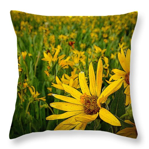 Sunflowers Throw Pillow featuring the photograph Sunflower Storm by Laurie Purcell