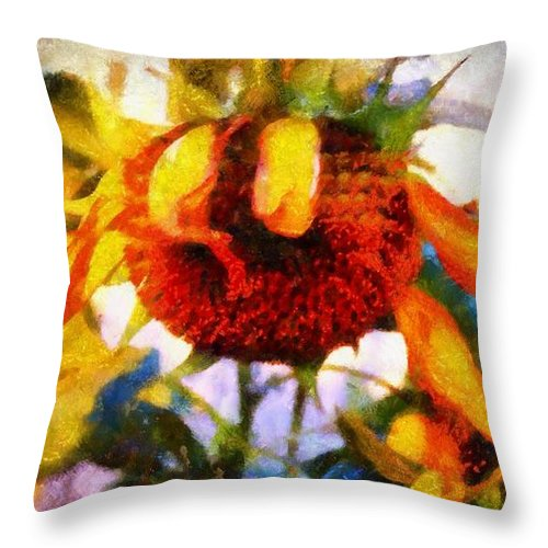Sunflower Throw Pillow featuring the photograph Sunflower Tender by Janine Riley
