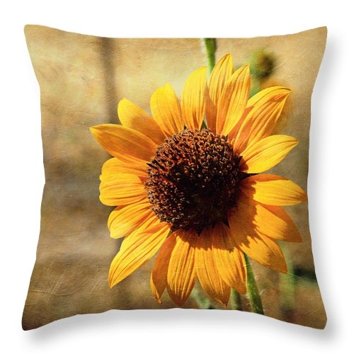 Sunflower Throw Pillow featuring the photograph Sunflower With Texture by Shawn McMillan
