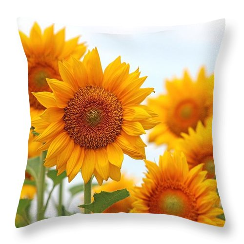Flowers Throw Pillow featuring the photograph Sunflowers by Gayle Miller