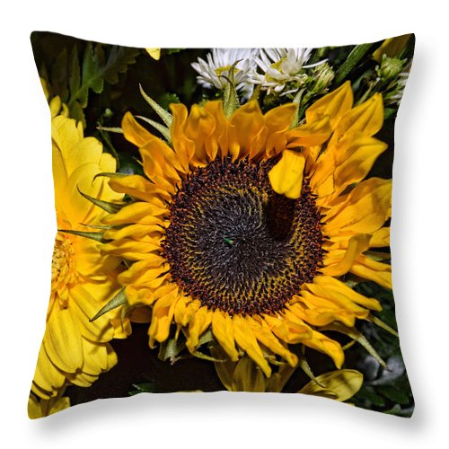 Sunflower Throw Pillow featuring the photograph Sunflowers by Mark Orr