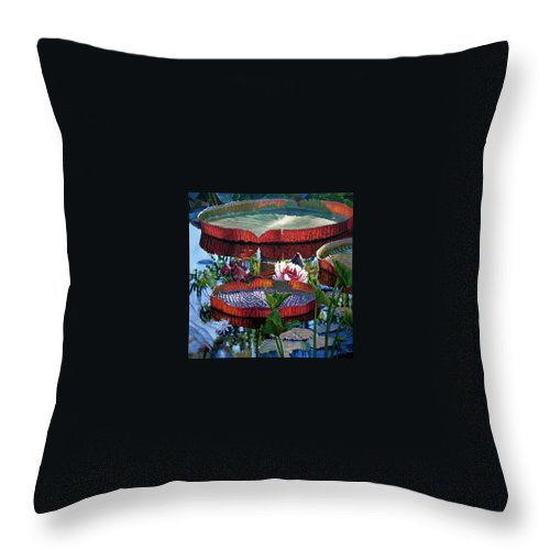 Garden Pond Throw Pillow featuring the painting Sunlight Shining Through by John Lautermilch